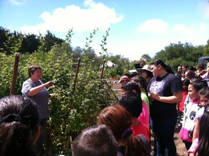 Farmer Dill taking about healthy foods.